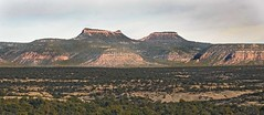 Bears Ears (Ron Wolf) Tags: bearsearsnationalmonument chinleformation earthscience geology geomorphology jurassic mesozoic nationalpark naturalbridgesnationalmonument triassic wingatesandstone butte desert plateau utah