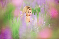 Wildflower Photo Session, Prince George (Dan Stanyer (Northern Pixel)) Tags: northernpixelphotography princegeorge britishcolumbia northernbc fashionphotography fashion fashionphotographers pg bc flowers wildflowers purple lupines purplelupines britishcolumbiaweddingphotographers