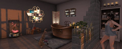 Rabbit! You dirtied the rug! And right after my bath! (vixen.wottitz) Tags: secondlife home rabbit bathroom