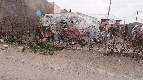 Poor dwelling in Borama
