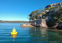 Shiprock sanctuary zone (Marine Explorer) Tags: nature marine underwater australia marineexplorer rx100 compact sony