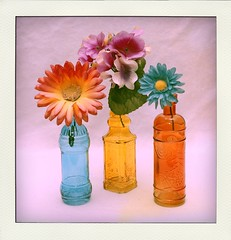 Bottles and Flowers (N.the.Kudzu) Tags: tabletop stilllife colored bottles flowers canon70d canoneflens flash dxoopticspro11 poladroid