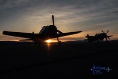 Morning shoot (plane driver) Tags: bearcat hellcat prs pylonracingseminar airraces reno nv stead socal caf planes sunrise shadow light sky clouds canon 70d