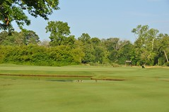 Settn Down Creek 008 (bigeagl29) Tags: settn down creek golf club ansley ga georgia alpharetta milton settndowncreek