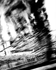 """""""PICCOLO FUOCO"""""""" -191 #artcontemporary #urban #photography #photographer #artphotography#fotografia #city #arte #artecontemporanea #arteconcettuale #conceptual_art_gallery  #paolomarianelli  #artistcommunity#urbex#urbano#urbexphot#urbexphotography #strada (paolomarianelli) Tags: paolomarianelli city rain artphotography urbexphotography arteconcettuale urbex fire libertà urbano conceptualartgallery artistcommunity fuoco arte artecontemporanea artcontemporary photography poetry urban poesia way freedom urbexphot fotografia photographer pioggia strada people"""