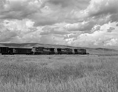 Coal train (Mojave511) Tags: colorado tmax400 pentax67 coaltrain craigbranch 1995 grass railroad train clouds monochrome