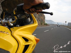 Get Ready To be Stung (Rash) Tags: karizma yellow rsa bike motorcycle