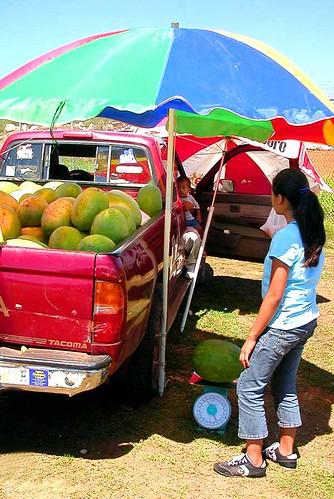 watermelon truck stand 1