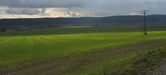 View over the fields to Hessberg (:Linda:) Tags: shadow cloud sun nature field electric germany track hill thuringia line pylon powerline sunray transmissionline hessberg weitersroda werratal