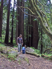 father and son and impressive log (benjiman) Tags: ben ezra log bigsur redwoods