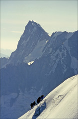 Grandes Jorasses with climbers in foreground (Ron Layters) Tags: france mountains alps nature geotagged slide transparency chamonix rescanned arete grandesjorasses ronlayters slidefilmthenscanned geo:lat=458786 geo:lon=697544 massifdumontblanc