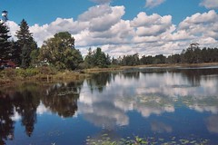 Seney (joeldinda) Tags: blue sky white water clouds 510fav catchycolors pond michigan michiganfavorites upperpeninsula n90s seney joeldinda