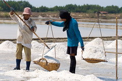 Salt, Fill 'er Up (Dale Allyn) Tags: salt thailand saltfarm farm evaporation work itsonginvite mirrorsofsociety itsong–canoneos20d itsong–men–atwork–southeastasia mirrors–menatwork 100mmmacro