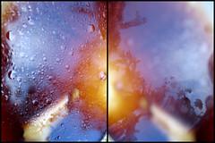 oil (near and far) (aphasiafilms) Tags: oil focus light tree leaves lunch cafe plate leftovers oilandvinegar vinegar