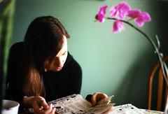 Laura Crossword (world_of_noise) Tags: laura crosswordpuzzle flower green color pentaxmesuper grain
