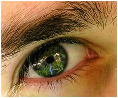 reflex.v.2 (/mrpunto) Tags: camera blue portrait reflection green eye ojo interestingness amazing eyes hands blueeyes manos camara refleccin interestingness80