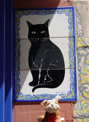"""Tile outside a shop in Seville (Saveena (AKA LHDugger)) Tags: vacation animal fauna cat tile spain feline all no lisa any seville h rights form written without usage reserved allowed consent dugger """"© saveena"""""""