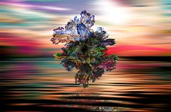 The Portal (Mr Bultitude) Tags: abstract art nature water photoshop surreal manipulation fractal secondmostfavourited mrbultitude neilcarey