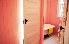 pink II - by toyfoto