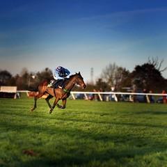 Leading (Mute*) Tags: jockey racecourse racehorse fakedof