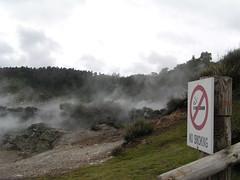 1466-no smoking (shimmertje) Tags: new zealand 204