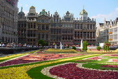 Floral Carpet Brussels (Vladsky) Tags: flowers brussels topv111 carpet europe googlemaps belgium grandplace bruxelles brussel grotemarkt flowercarpet 1on1