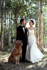 Bride and groom lost in the forest (ChrissyCream) Tags: december 2005 hongkong wedding bride groom dog gown happy couple girl outdoor goldenretriever