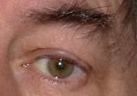 c7 (Thoralf Schade) Tags: eye eyes augen auge