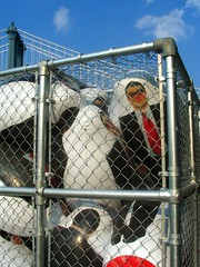 Caged Inflatable Guys In Suits (Vidiot) Tags: park nyc bridge sculpture nycpb ferry brooklyn fence suits state manhattan dumbo suit inflatable empire manhattanbridge fencing fulton blowup empirefultonferrypark