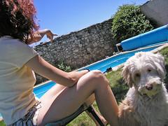 Est ah (Rai Robledo) Tags: otto perro girl chica dog pool piscina verano sol sun summer kakadoochoice ula ulia mimusa canon digital eos reflex 2006 canonefs1855mm agosto agosto2006 350d canoneos350d ulayotto rairobledophotography rairobledo wwwrairobledocom copyrightrairobledo rairobledocom rairobledofotografa rairobledo fotografarairobledo fotgrafo fotgrafomadrid raiworld rairobledofotgrafo