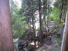 Niagara Escarpment, Halton Falls (marxgrouchodam) Tags: niagara haltonfalls escarpment