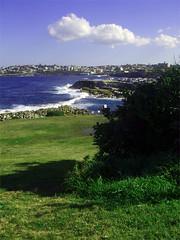 coogee (dishevld) Tags: ocean sydney australia coogee