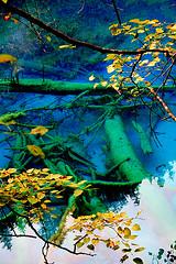 rIMG_0421 (Sam's Exotic Travels) Tags: china water beauty reflections sam natural worldheritagesite waterfalls sichuan jiuzhaigou sams babel travelphotos samsays samsexotictravelphotos exotictravelphotos samsayscom
