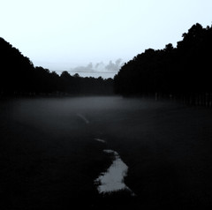 fog on the bayou (slight clutter) Tags: morning trees blackandwhite bw mist nature fog landscape texas houston bayou iloveflickr slightclutter before8am katyahorner slightclutterphotography