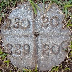 230 201 229 200 (dogwelder) Tags: california cemetery october cement 2006 200 squaredcircle squircle zurbulon6 230 sanfernandovalley chatsworth 201 229 gravemarker zurbulon gatturphy oakwoodmemorialpark plotmarker