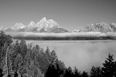 My Take in B&W (Robby Edwards) Tags: vacation mountains fog nationalpark wyoming grandteton grandtetonnationalpark cathedralgroup snakeriveroverlook abigfave