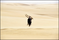finally I've found it... (Alessandro Vannucci) Tags: africa wood niger sand desert wind 100v10f touareg tener iannacell