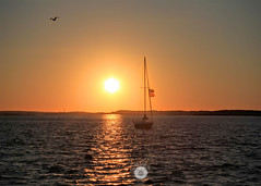 Cape Cod Sunset (urvesphotography) Tags: sailboat sail sunset shimmers sunrays sunshine sun ocean sea cape cod massachusetts boston usa