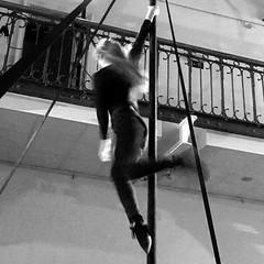 Pole Dancer ¬ 6652 (Lieven SOETE) Tags: 2017 young junge joven jeune jóvenes jovem feminine 女士 weiblich féminine femminile mulheres lady woman female vrouw frau femme mujer mulher donna жена γυναίκα девушка девушки женщина краснодар krasnodar body corpo cuerpo corps körper tänzer dancer danseuse tänzerin balerina ballerina bailarina ballerine danzatrice dançarina sensual sensuality sensuel sensuale sensualidade temptation sensualita seductive seduction pole paaldans kutup dansı полюсный танец
