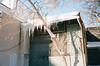 (Džesika Devic) Tags: film 35mm leicam6 kodakektar100 icicles ontario hometown sun winter snow