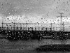 Mysterious vision !!! (François Tomasi) Tags: monochrome blackandwhite noiretblanc françoistomasi tomasiphotography yahoo google flickr sudouest france europe french charentemaritime justedutalent lights light lumière photo photographie photography photoshop filtre digital numérique eau water pluie gouttedeau goutte pointdevue pointofview pov avril 2018 glass window vitre rain