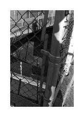 (billbostonmass) Tags: adox silvermax 100 129silvermax110068f fm2n cv 40mm ultron sl2 epson v800 east boston massachusetts eastboston film graffiti