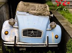 Old Lady (Inti Runa) Tags: canoneos5dmarkiv sigma50mm14dghsmart citroën2cv automobile