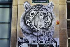 Ardif_6019 rue Eugène Spuller Paris 03 (meuh1246) Tags: streetart paris ardif rueeugènespuller paris03 animaux tigre