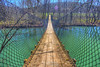 Swinging Bridge over the Wolf River - Sgt Alvin C York State Park (J.L. Ramsaur Photography) Tags: jlrphotography nikond7200 nikon d7200 photography photo pallmalltn middletennessee fentresscounty tennessee 2018 engineerswithcameras swingingbridge photographyforgod thesouth southernphotography screamofthephotographer ibeauty jlramsaurphotography photograph pic pallmall tennesseephotographer pallmalltennessee tennesseehdr hdr worldhdr hdraddicted bracketed photomatix hdrphotomatix hdrvillage hdrworlds hdrimaging hdrrighthererightnow hdrwater bridge bridgingthegap bridgesandtunnels bridgesoftheworld bridgesinhdr bridgesbridgesandmorebridges sgtalvincyorkstatepark statepark tennesseestatepark sgtalvincyork established1967 sgtalvincyorkpark park tennesseestateparks tennesseedepartmentofenvironmentconservation tdec wolfriver river bluegreen greenblue