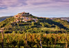 Motovun u predvečerje (MountMan Photo) Tags: motovun istra croatia landscape cityscape vinograd vineyard flickrunitedaward
