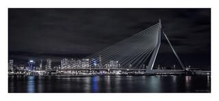 Rotterdam - Erasmusbrug III