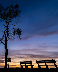 Benchmark (tshabazzphotography) Tags: sunrise sunlight sunriseheaven earlybird morning sky seat bench 2 two tree pine colorfulclouds color beautiful beauty clouds castillodesanmarcos nationalmonument historic history battle fort spanish brick construction architecture