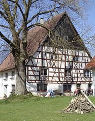 Fachwerkhof Eggelsbach Stadtgemeinde Biberach/Riß (stoerche-bw) Tags: fachwerkhaus hausbaum oberschwaben biberach