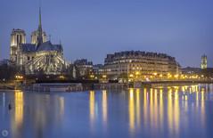Notre-Dame, Flood in Paris Act 13 [FR] (ta92310) Tags: winter unesco idf 75005 75 paris europe cathedrale eglise church catholique catholic canon 6d longexposure night nuit notredame seine 2018 bluehour crue flood